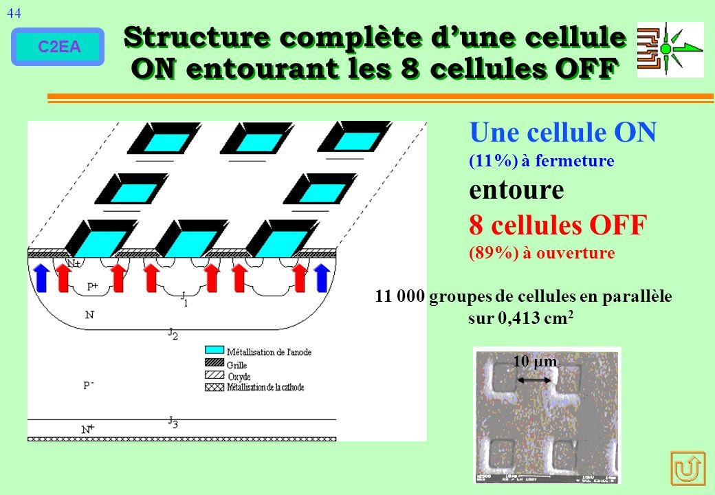 C2EA Structure complète dune cellule ON entourant les 8 cellules OFF 44 10 m 11 000 groupes de cellules en parallèle sur 0,413 cm 2 Une cellule ON (11