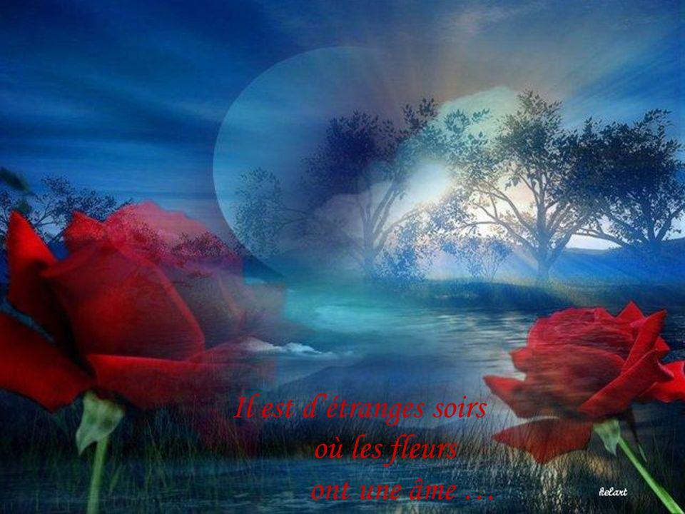 Ta seule obligation en nimporte quelle vie cest dêtre vrai envers toi-même …