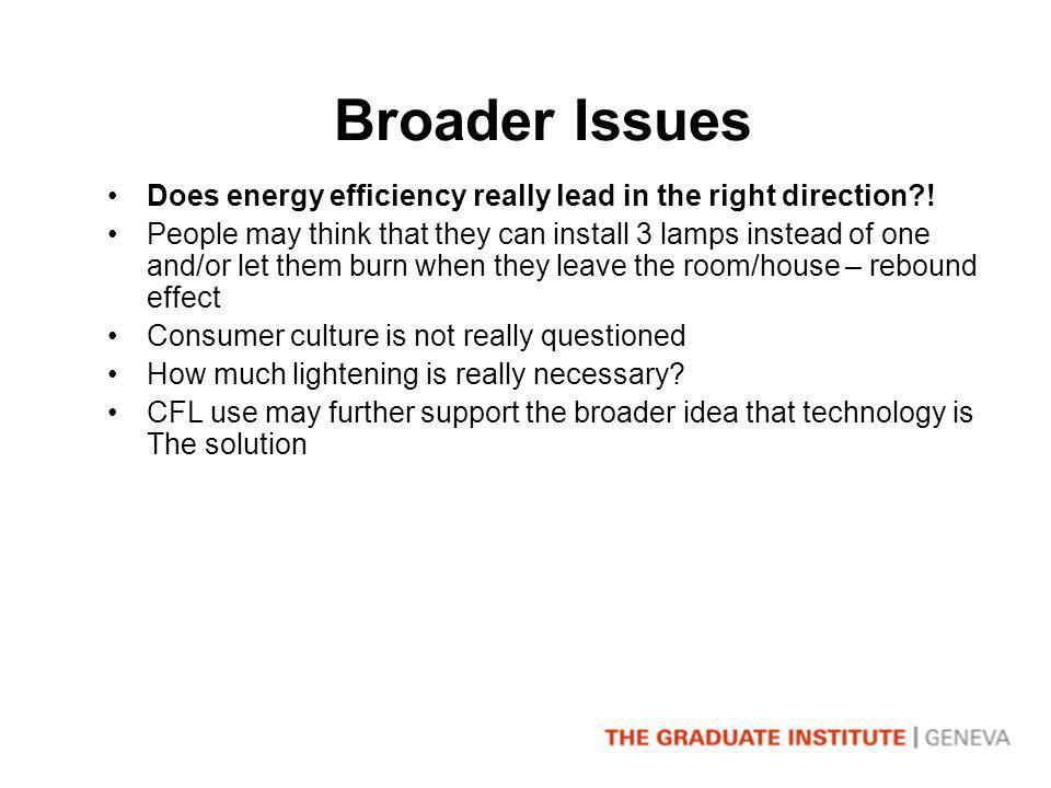 Broader Issues Does energy efficiency really lead in the right direction .