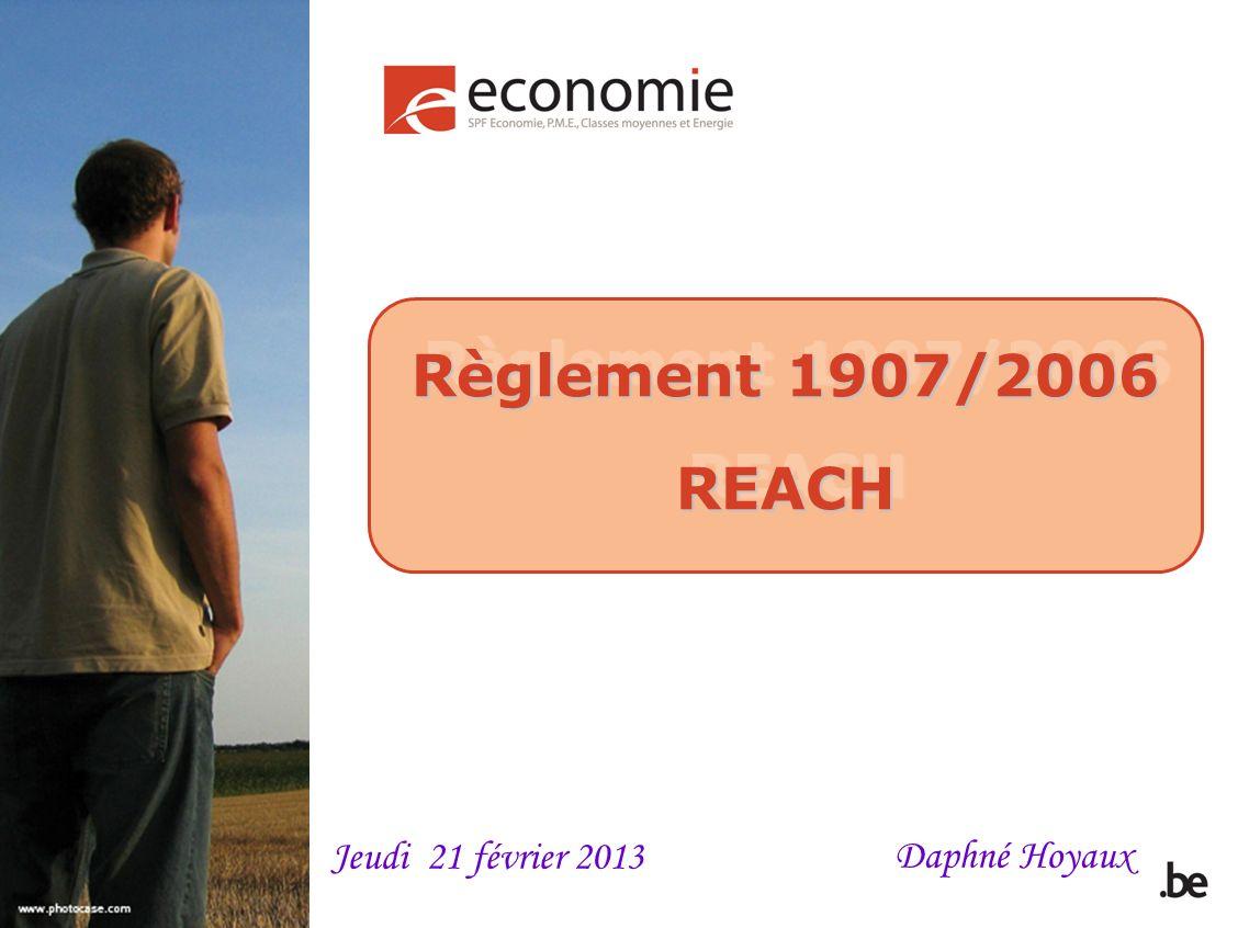 Règlement 1907/2006 REACH REACH Daphné Hoyaux Jeudi 21 février 2013