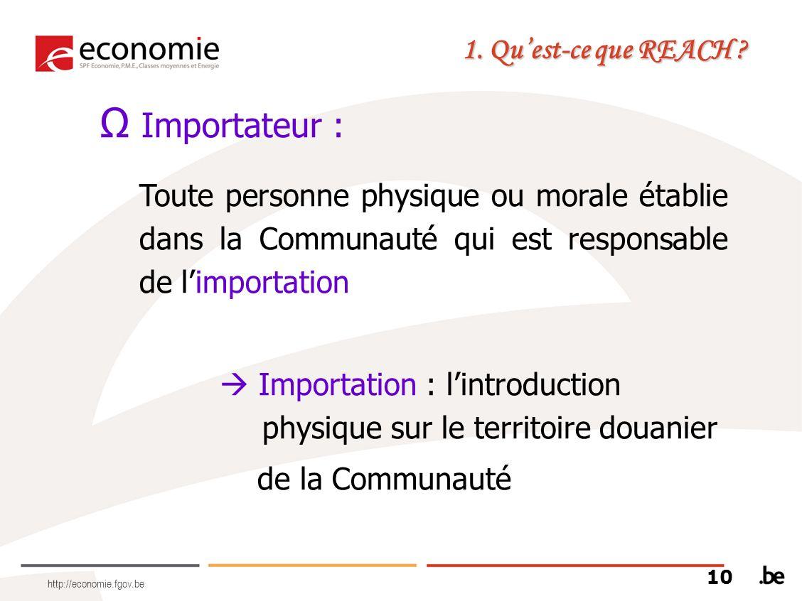 http://economie.fgov.be Importateur : Toute personne physique ou morale établie dans la Communauté qui est responsable de limportation Importation : l