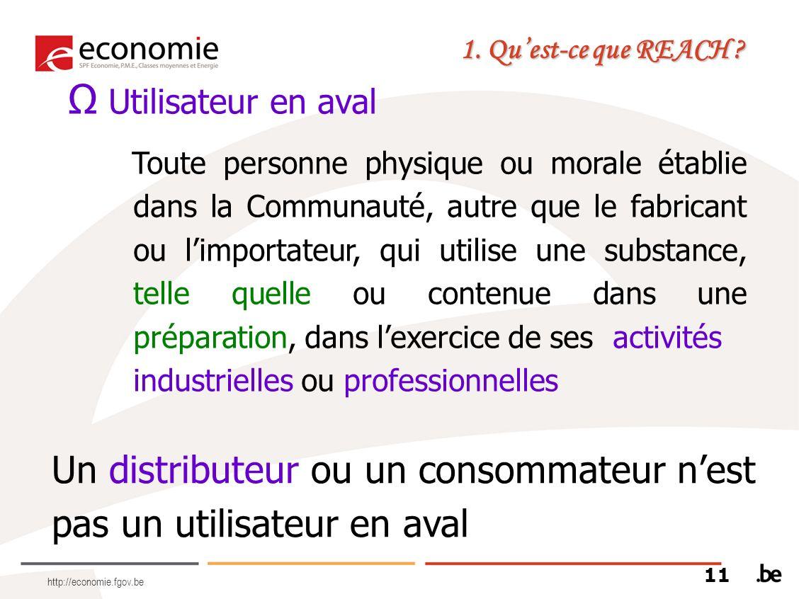 http://economie.fgov.be Utilisateur en aval Toute personne physique ou morale établie dans la Communauté, autre que le fabricant ou limportateur, qui