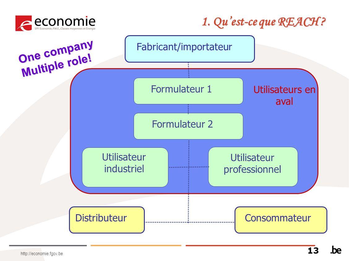 http://economie.fgov.be Fabricant/importateur DistributeurConsommateur Utilisateur industriel Utilisateur professionnel Formulateur 1 Formulateur 2 Ut