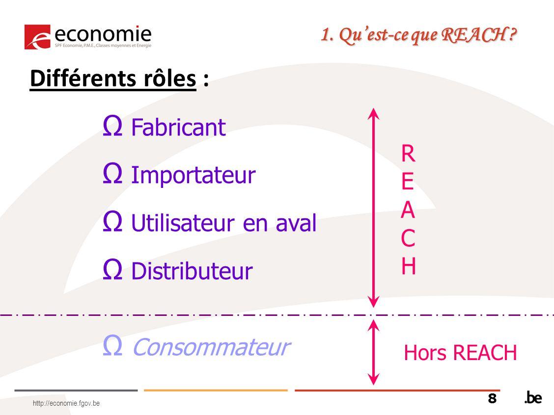 http://economie.fgov.be Fabricant Importateur Utilisateur en aval Distributeur Consommateur Différents rôles : 1. Quest-ce que REACH ? REACHREACH Hors