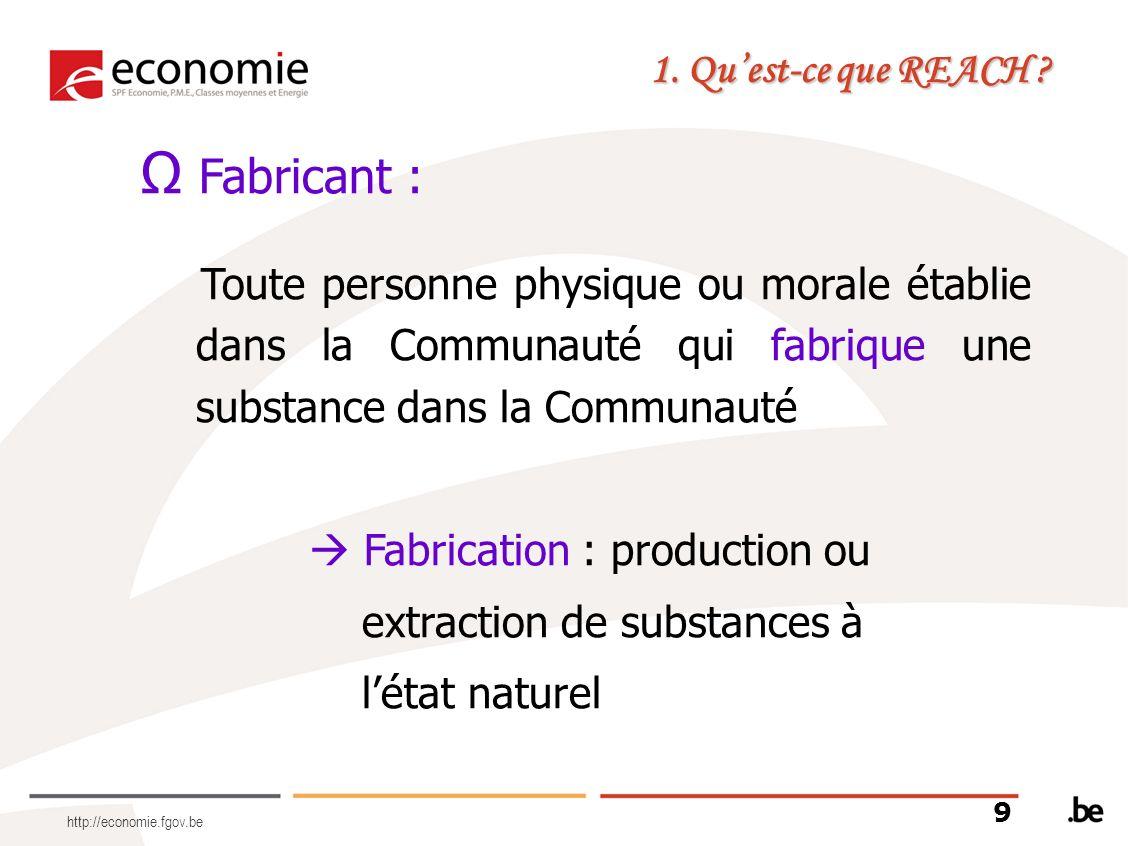 http://economie.fgov.be Fabricant : Toute personne physique ou morale établie dans la Communauté qui fabrique une substance dans la Communauté Fabrica