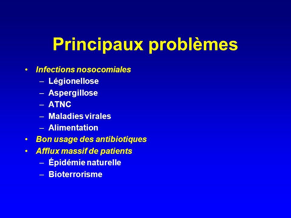 Principaux problèmes Infections nosocomiales –Légionellose –Aspergillose –ATNC –Maladies virales –Alimentation Bon usage des antibiotiques Afflux massif de patients –Épidémie naturelle –Bioterrorisme