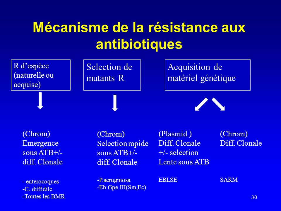 30 Mécanisme de la résistance aux antibiotiques R despèce (naturelle ou acquise) Selection de mutants R Acquisition de matériel génétique (Chrom) Emer