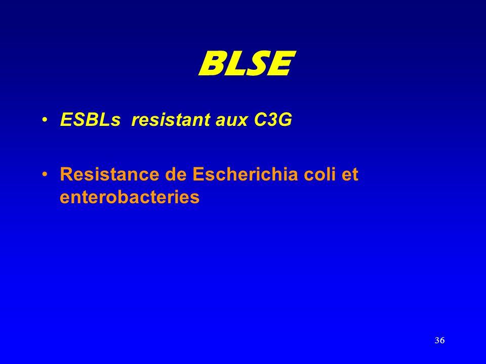 36 BLSE ESBLs resistant aux C3G Resistance de Escherichia coli et enterobacteries