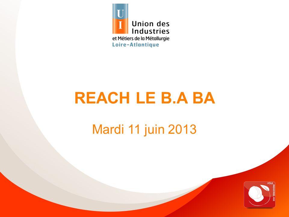 Reach, le B.A BA – 11 juin 2013 IMPORTATEUR OUI pour les S > 1t/an Achat hors UE (directement, sans passer par un importateur) NON, à faire par le P/I Achat dans lUE UTILISATEUR AVAL ENREGISTREMENT .