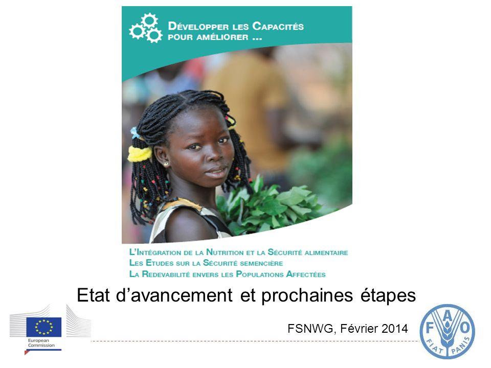 Etat davancement et prochaines étapes FSNWG, Février 2014
