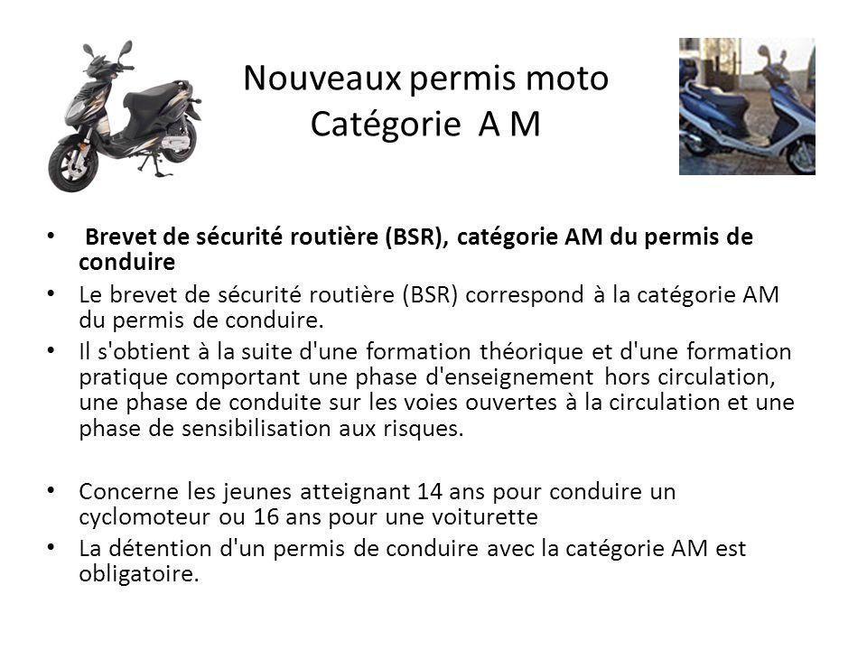 Nouveaux permis moto Catégorie A M Brevet de sécurité routière (BSR), catégorie AM du permis de conduire Le brevet de sécurité routière (BSR) correspond à la catégorie AM du permis de conduire.