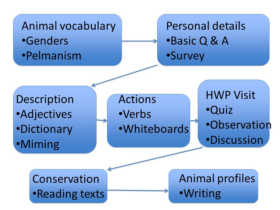 Description Adjectives Dictionary Miming Personal details Basic Q & A Survey Actions Verbs Whiteboards Animal vocabulary Genders Pelmanism HWP Visit Q