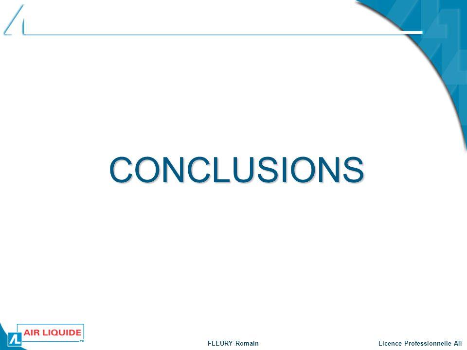 FLEURY Romain Licence Professionnelle AII CONCLUSIONS