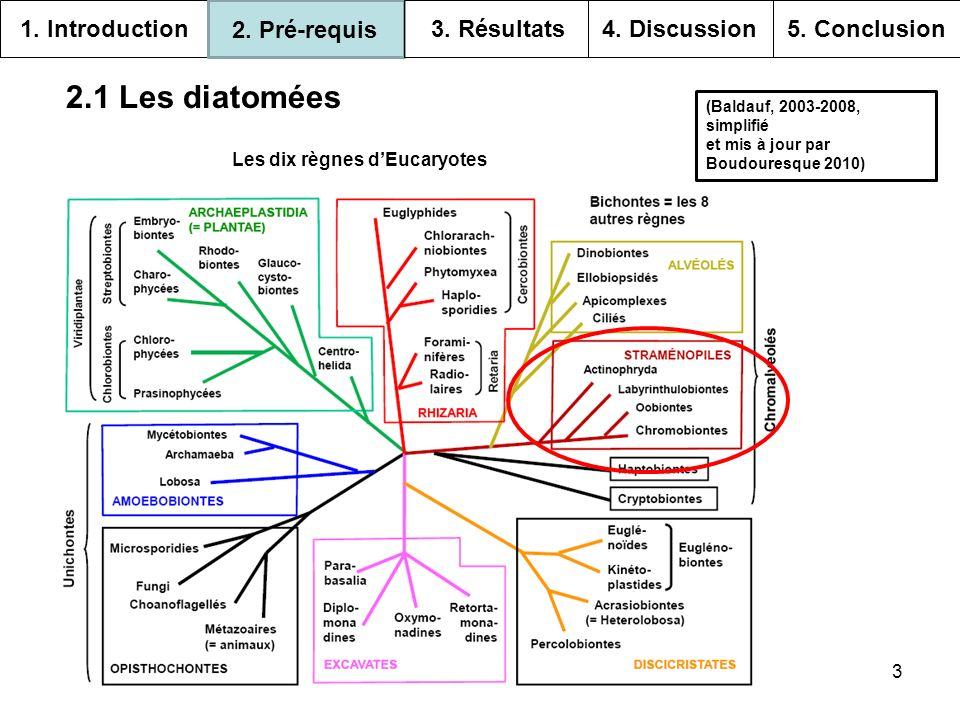 14 Références http://www.snv.jussieu.fr/bmedia/Chloroplaste/endosymbiose.htm Bowler C., Vardi A.
