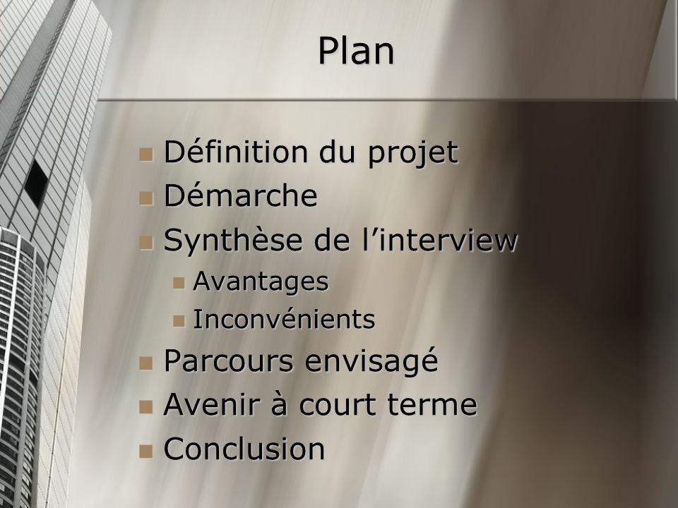 Plan Définition du projet Définition du projet Démarche Démarche Synthèse de linterview Synthèse de linterview Avantages Avantages Inconvénients Incon