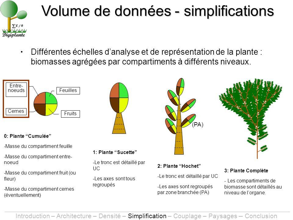 Différentes échelles danalyse et de représentation de la plante : biomasses agrégées par compartiments à différents niveaux.