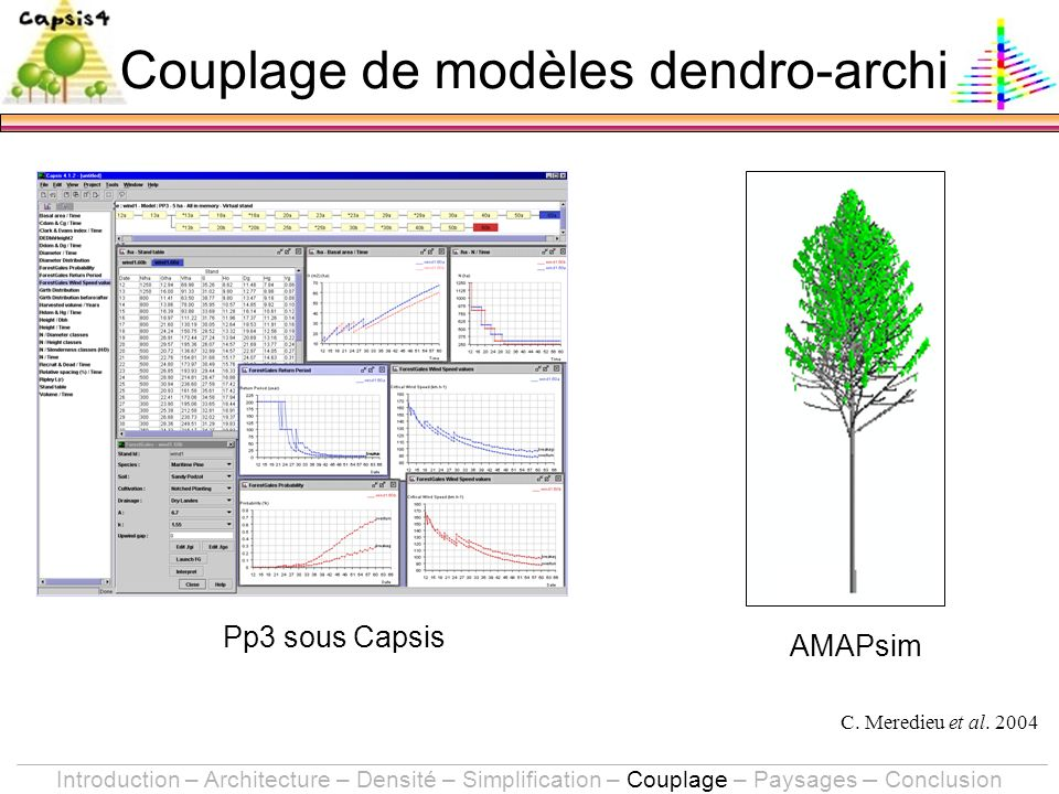 Pp3 sous Capsis AMAPsim C. Meredieu et al. 2004 Introduction – Architecture – Densité – Simplification – Couplage – Paysages – Conclusion Couplage de