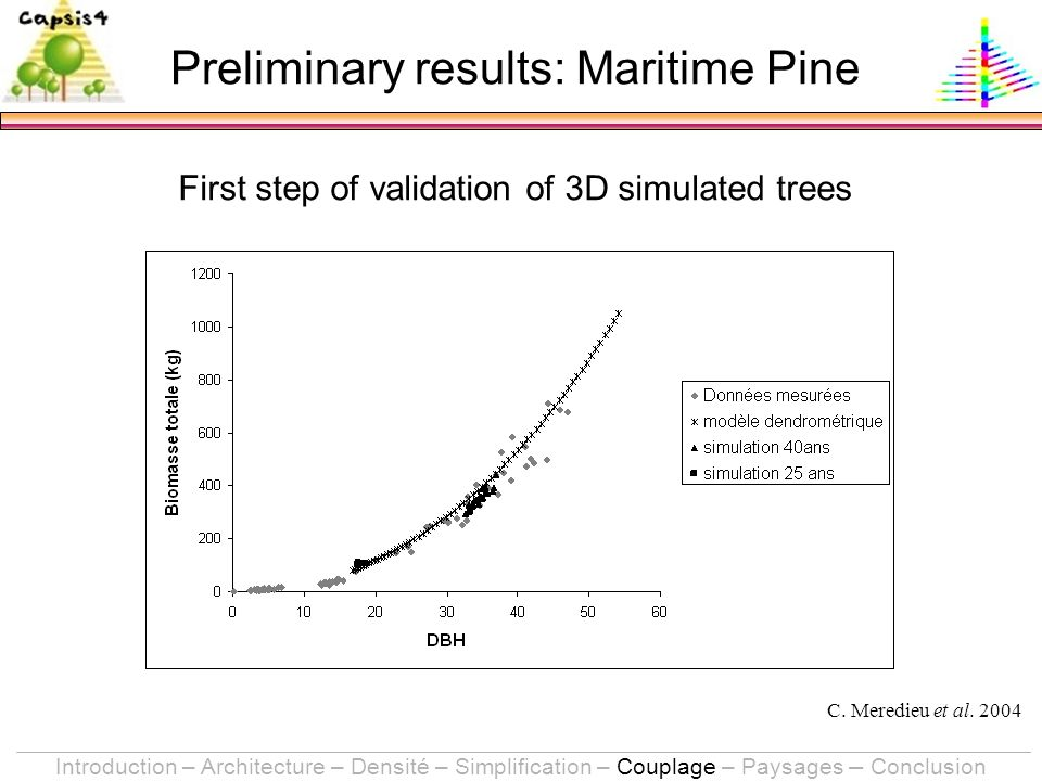 Preliminary results: Maritime Pine First step of validation of 3D simulated trees C.