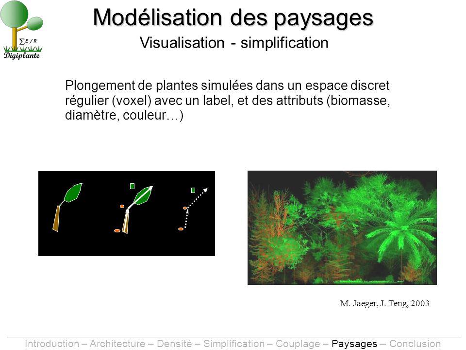 Plongement de plantes simulées dans un espace discret régulier (voxel) avec un label, et des attributs (biomasse, diamètre, couleur…) Modélisation des paysages Visualisation - simplification M.