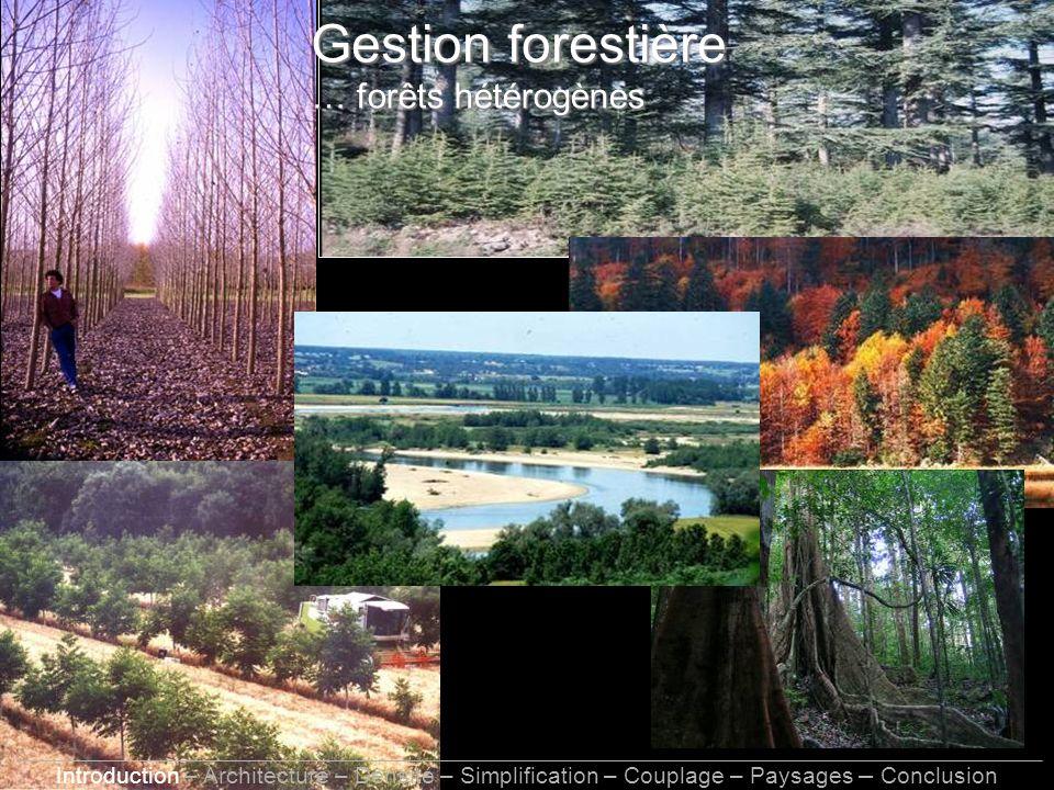 Gestion forestière … forêts hétérogènes Introduction – Architecture – Densité – Simplification – Couplage – Paysages – Conclusion