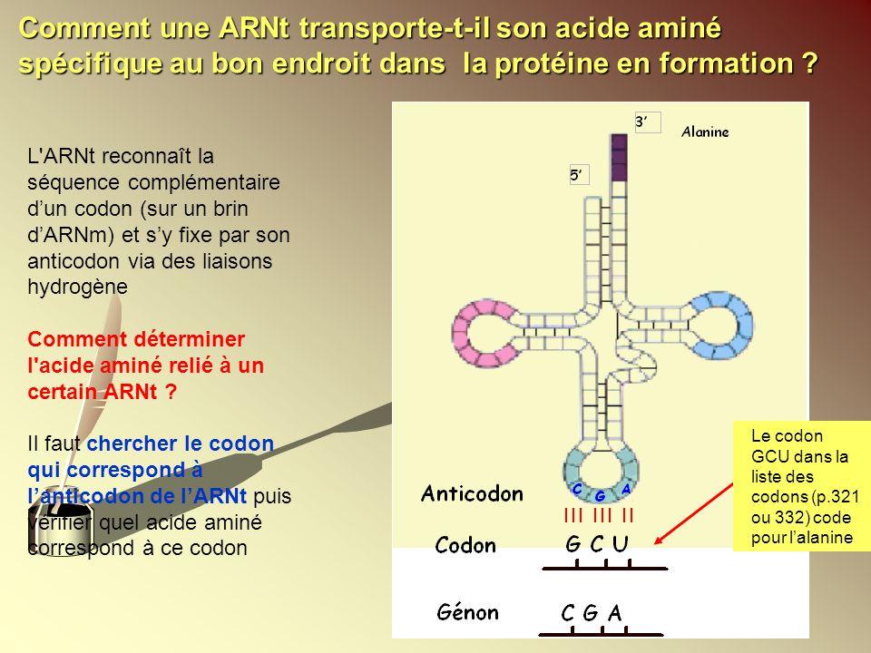 L'ARNt reconnaît la séquence complémentaire dun codon (sur un brin dARNm) et sy fixe par son anticodon via des liaisons hydrogène Comment déterminer l