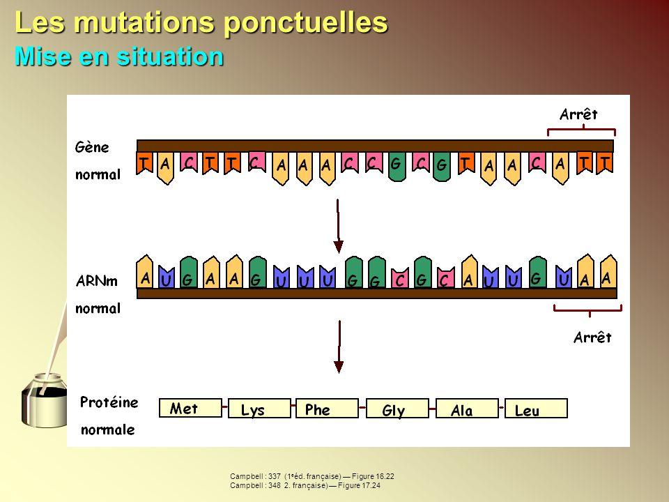 Les mutations ponctuelles Mise en situation Campbell : 337 (1 e éd. française) Figure 16.22 Campbell : 348 2. française) Figure 17.24