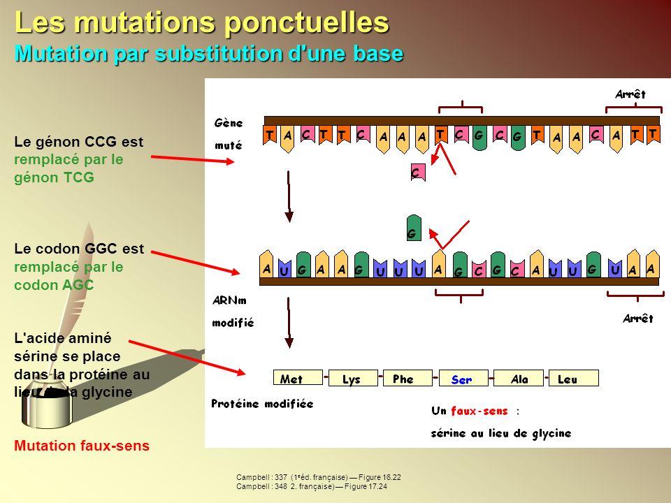 Les mutations ponctuelles Mutation par substitution d'une base Le génon CCG est remplacé par le génon TCG Le codon GGC est remplacé par le codon AGC L