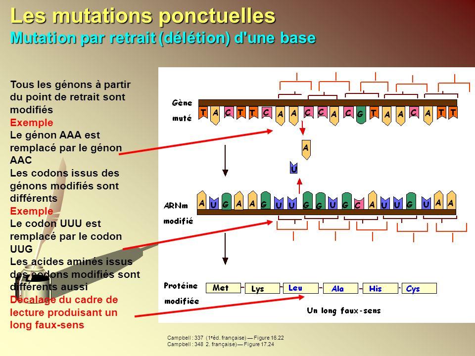 Les mutations ponctuelles Mutation par retrait (délétion) d'une base Tous les génons à partir du point de retrait sont modifiés Exemple Le génon AAA e