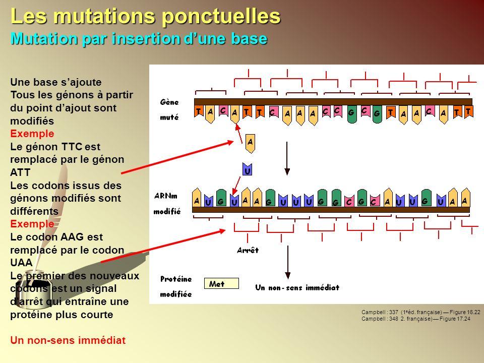 Les mutations ponctuelles Mutation par insertion dune base Une base sajoute Tous les génons à partir du point dajout sont modifiés Exemple Le génon TT