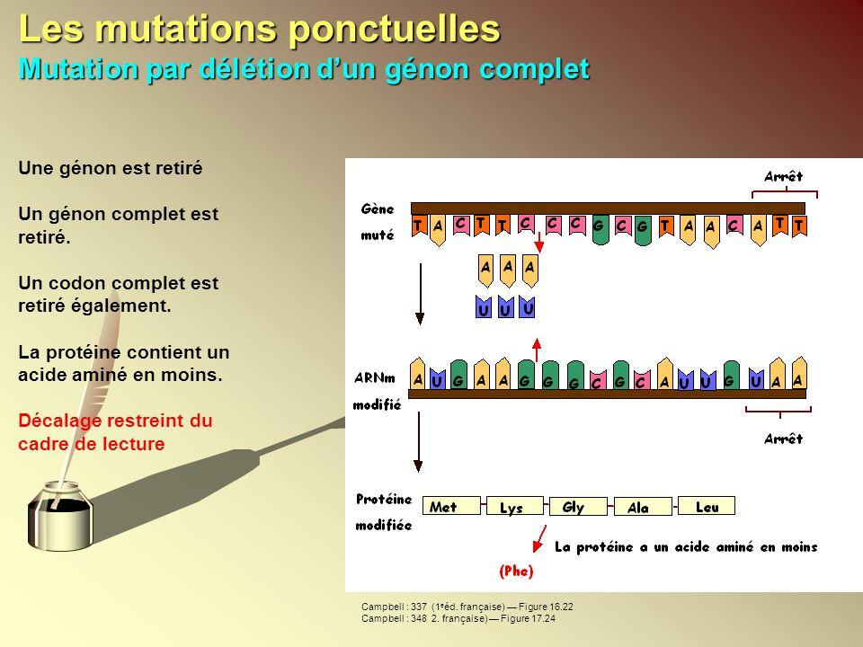 Les mutations ponctuelles Mutation par délétion dun génon complet Une génon est retiré Un génon complet est retiré. Un codon complet est retiré égalem