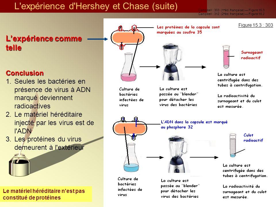 Le matériel héréditaire n'est pas constitué de protéines Lexpérience comme telleConclusion 1.Seules les bactéries en présence de virus à ADN marqué de