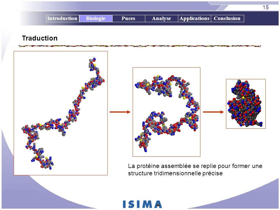 15 IntroductionBiologiePucesAnalyseApplicationsConclusion La protéine assemblée se replie pour former une structure tridimensionnelle précise Biologie