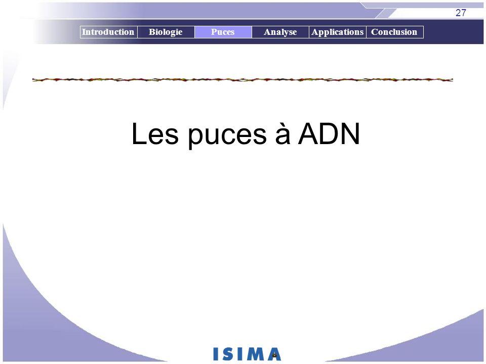 27 IntroductionBiologiePucesAnalyseApplicationsConclusion Les puces à ADN Puces
