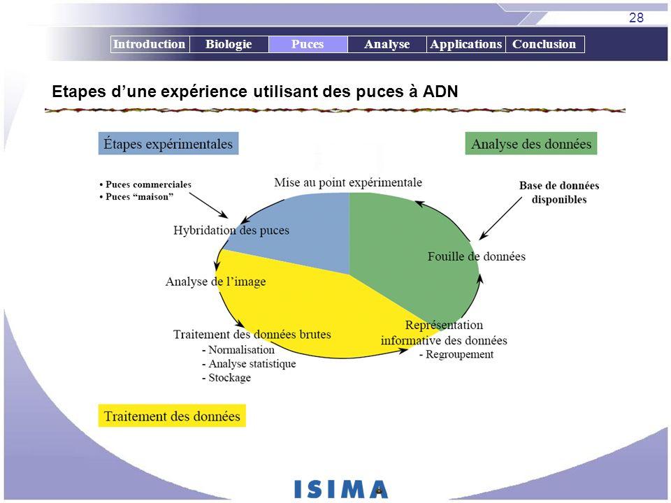 28 IntroductionBiologiePucesAnalyseApplicationsConclusionPuces Etapes dune expérience utilisant des puces à ADN