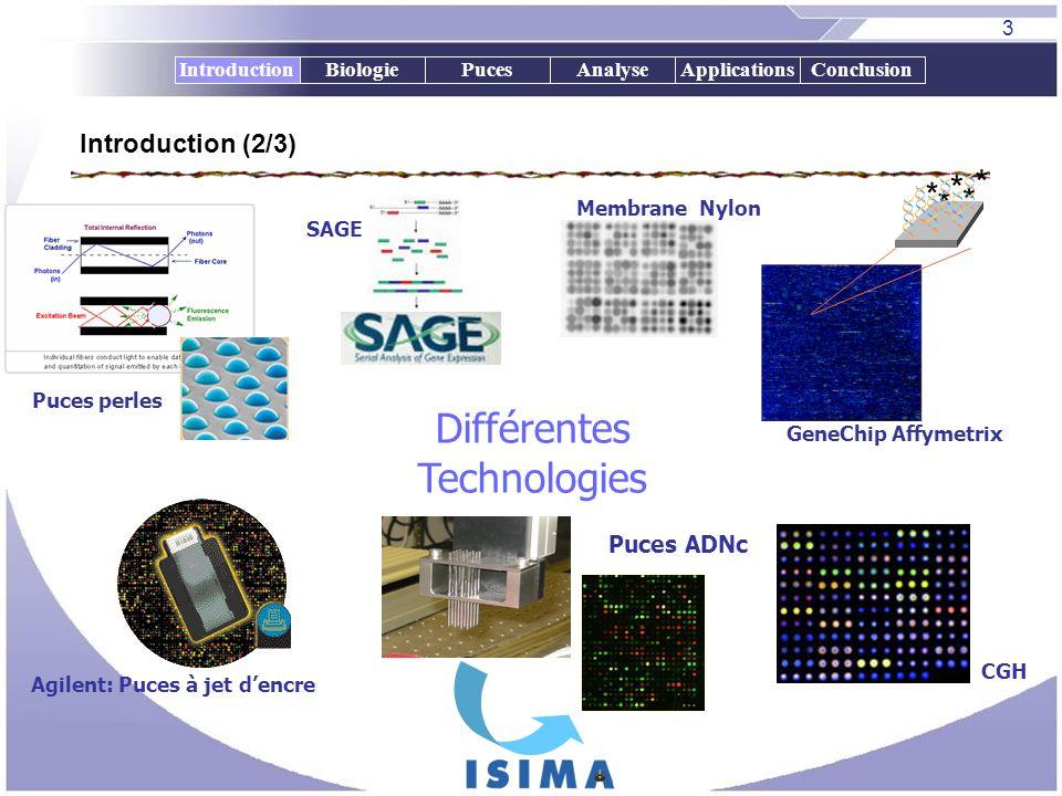 3 BiologiePucesAnalyseApplicationsConclusion Puces perles * * * * * GeneChip Affymetrix Puces ADNc Membrane Nylon SAGE Différentes Technologies CGH Ag