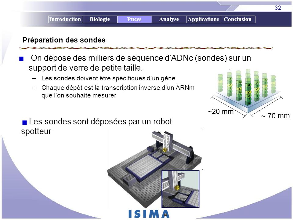 32 IntroductionBiologiePucesAnalyseApplicationsConclusion Préparation des sondes On dépose des milliers de séquence dADNc (sondes) sur un support de v