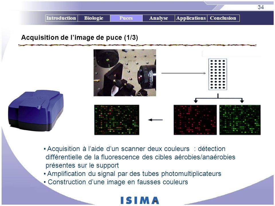 34 IntroductionBiologiePucesAnalyseApplicationsConclusion Acquisition de limage de puce (1/3) Acquisition à laide dun scanner deux couleurs : détectio
