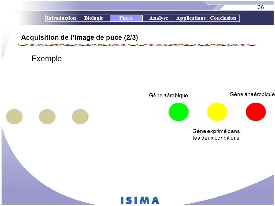 36 IntroductionBiologiePucesAnalyseApplicationsConclusion Acquisition de limage de puce (2/3) Exemple Gène aérobique Gène anaérobique Gène exprimé dan