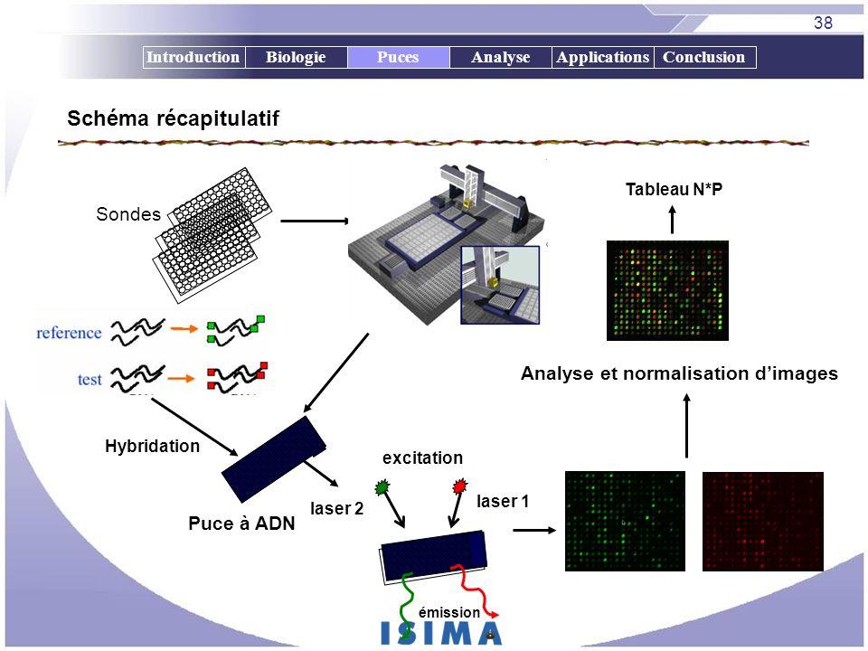 38 IntroductionBiologiePucesAnalyseApplicationsConclusionPuces Schéma récapitulatif Puce à ADN excitation laser 1 laser 2 émission Tableau N*P Analyse