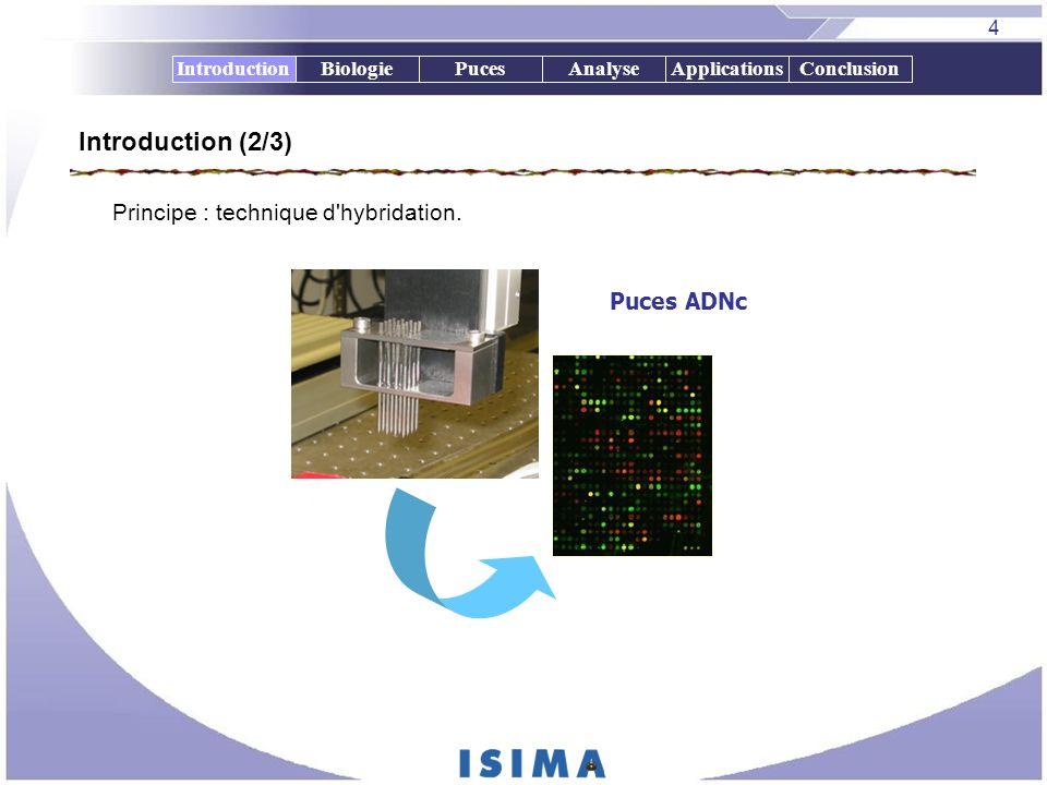 4 BiologiePucesAnalyseApplicationsConclusion Puces ADNc Principe : technique d'hybridation. Introduction (2/3) Introduction