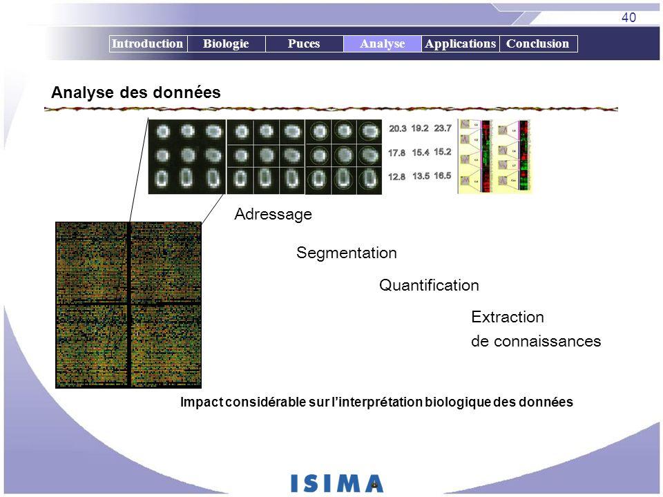 40 IntroductionBiologiePucesAnalyseApplicationsConclusion Analyse des données Adressage Segmentation Quantification Extraction de connaissances Impact