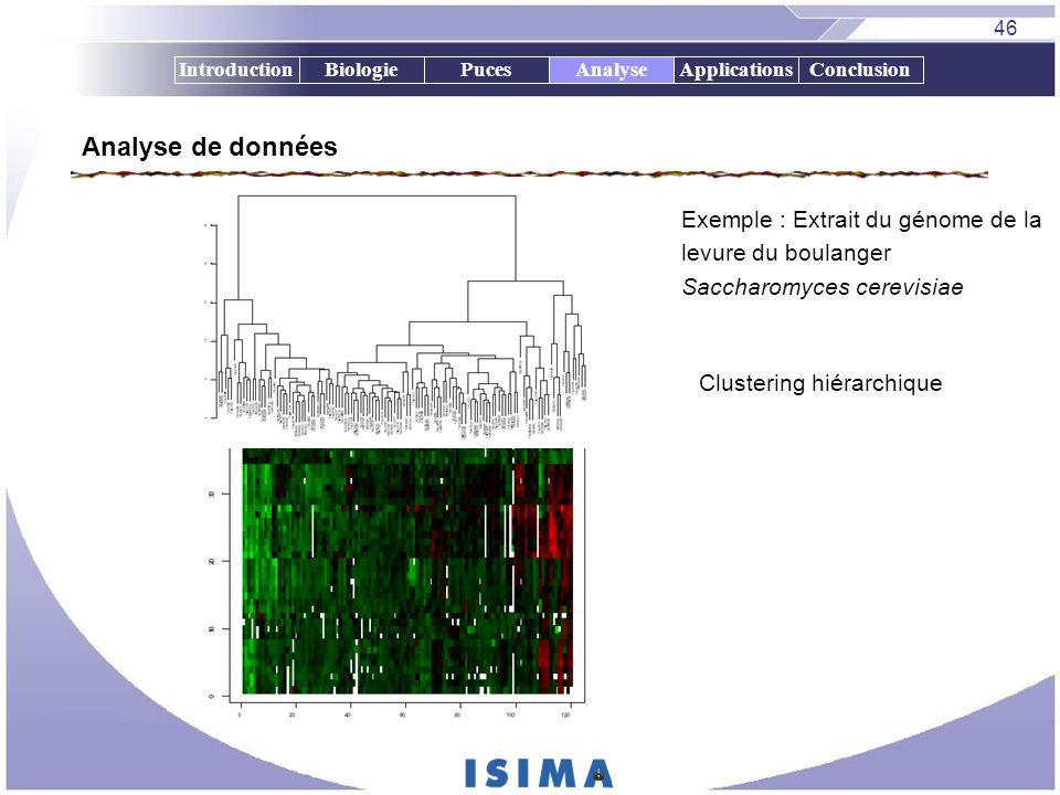 46 IntroductionBiologiePucesAnalyseApplicationsConclusion Analyse de données Exemple : Extrait du génome de la levure du boulanger Saccharomyces cerev