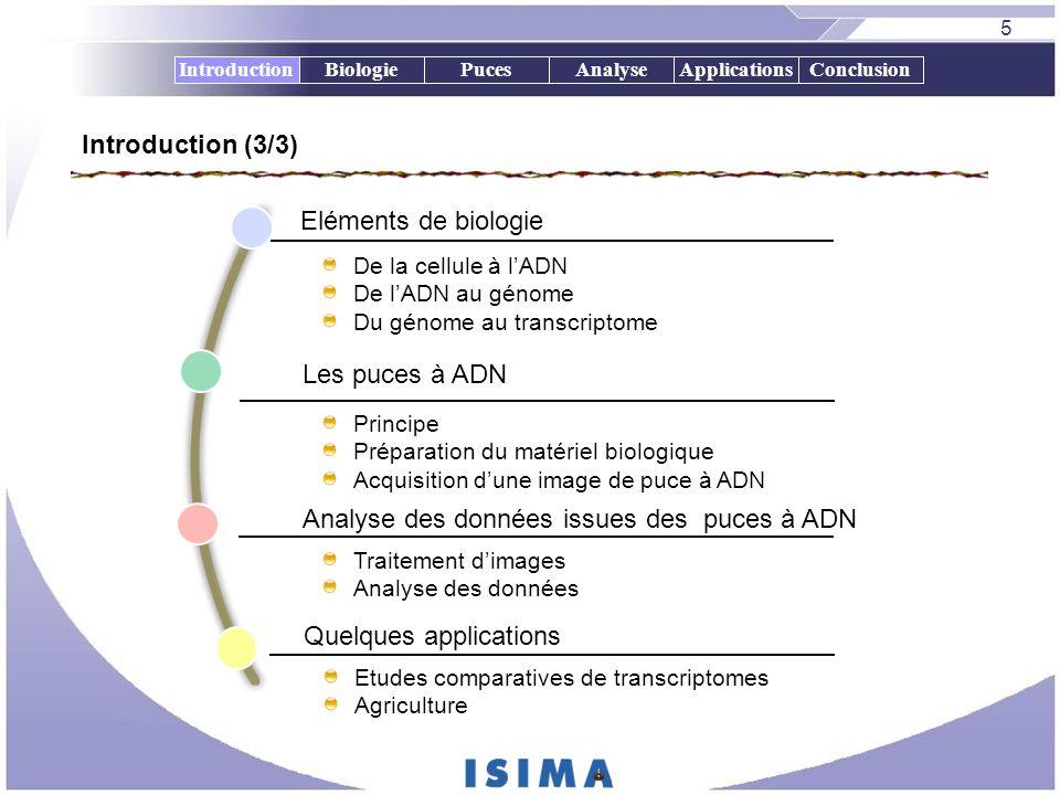 5 BiologiePucesAnalyseApplicationsConclusionIntroduction Eléments de biologie Les puces à ADN Analyse des données issues des puces à ADN De la cellule