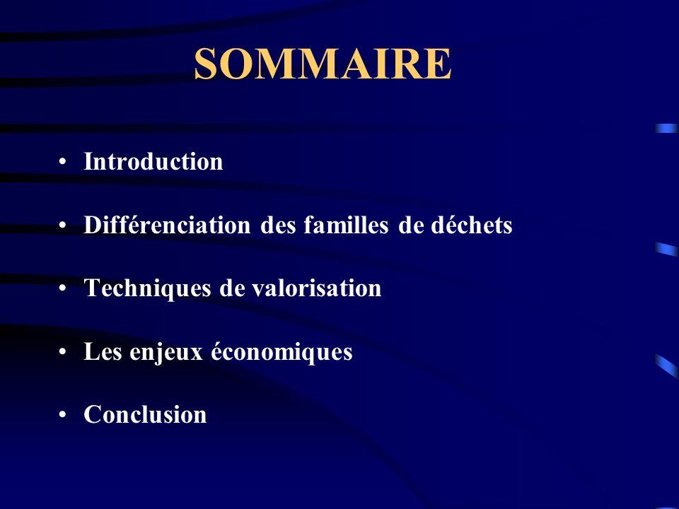 SOMMAIRE Introduction Différenciation des familles de déchets Techniques de valorisation Les enjeux économiques Conclusion