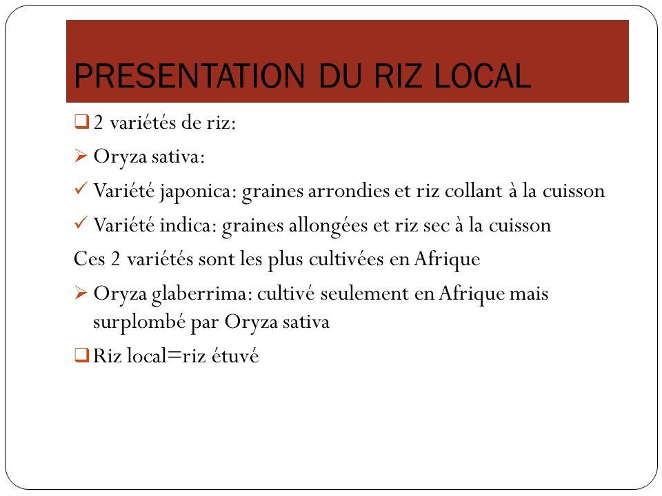 PRESENTATION DU RIZ LOCAL 2 variétés de riz: Oryza sativa: Variété japonica: graines arrondies et riz collant à la cuisson Variété indica: graines all