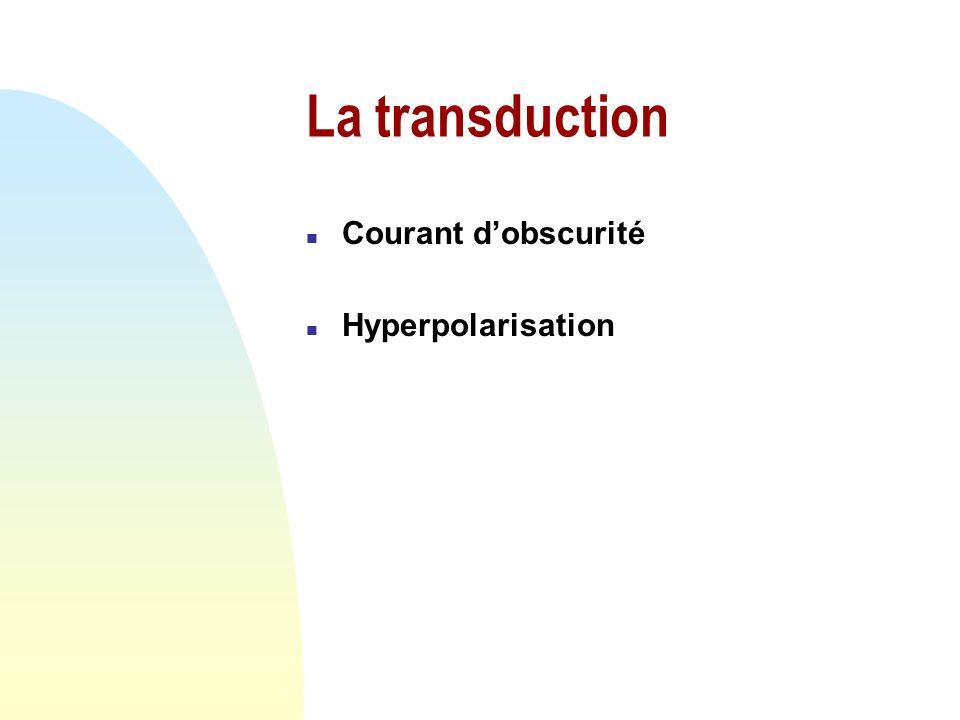 La photoisomérisation n Photon: passage du 11-cis-rétinal en tout-trans-rétinal è changement de fonction de lopsine