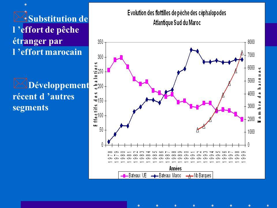 Fin des années 60 Actuel Chute importante des rendements * Fin des années 60 : 9 Tonnes /jour du poulpe * Actuel : Une Tonne / jour