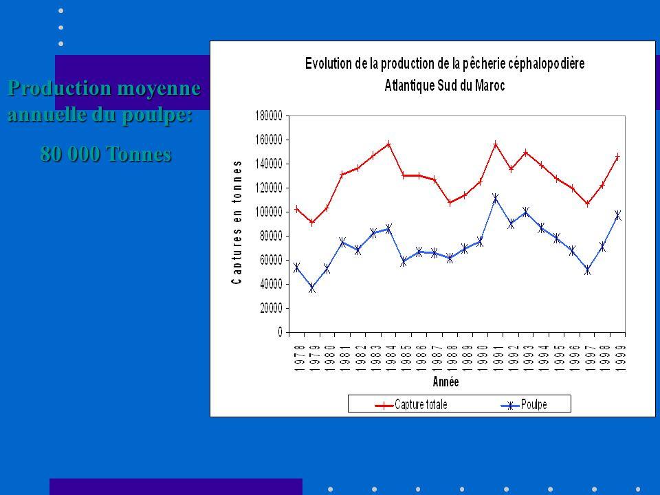 * Substitution de l effort de pêche étranger par l effort marocain * Développement récent d autres segments
