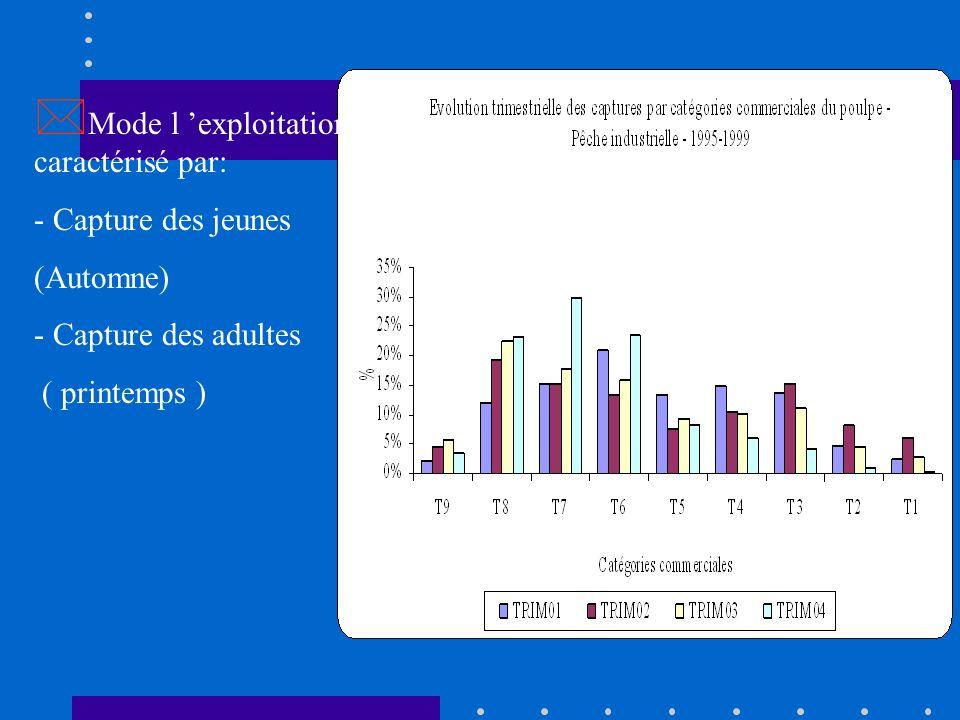 Production moyenne annuelle du poulpe: 80 000 Tonnes 80 000 Tonnes