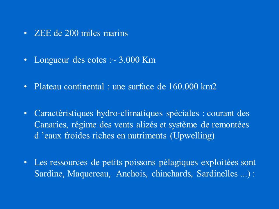 Historique du développement de la pêche au Maroc Description des pêcheries Etat actuel des stocks & tendances Conclusions